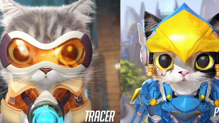 Overwatch quase teve um gato de jetpack como personagem jogável