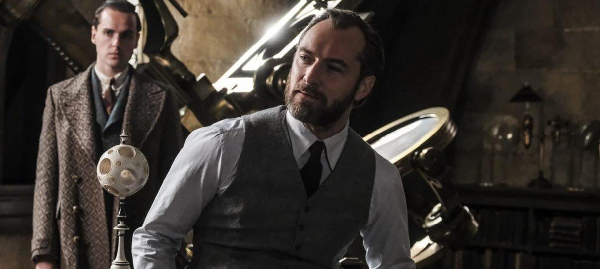 Animais Fantásticos   Homossexualidade de Dumbledore não será escondida, diz diretor