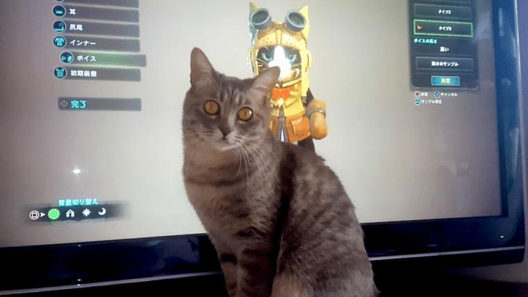 Esses gatinhos reagindo ao Amigato de Monster Hunter: World são a coisa mais fofa de hoje