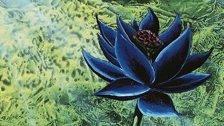 Magic: The Gathering | Uma Black Lotus foi leiloada por US$ 87 mil