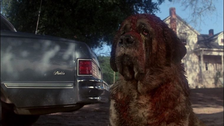 Castle Rock | Teaser da série de Stephen King faz referência a Cujo