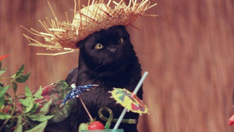 O Mundo Sombrio de Sabrina | Nova foto mostra a nova versão de Salem