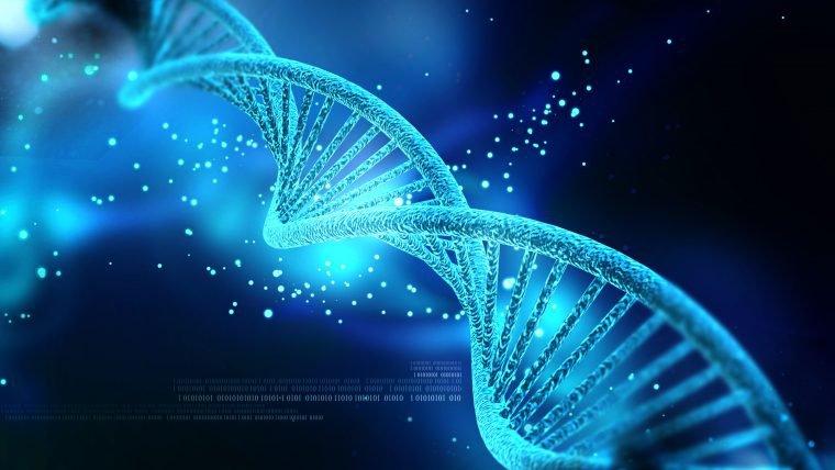 Trabalho de cientista que criou bebês geneticamente modificados é considerado ilegal