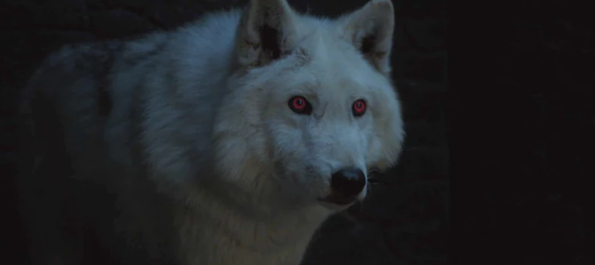 O que aconteceu com os lobos de Game of Thrones?