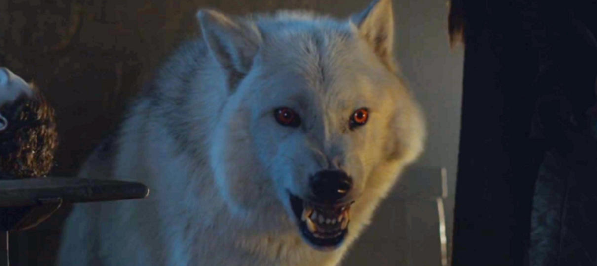 Game of Thrones | A internet está revoltada com o tratamento do Fantasma