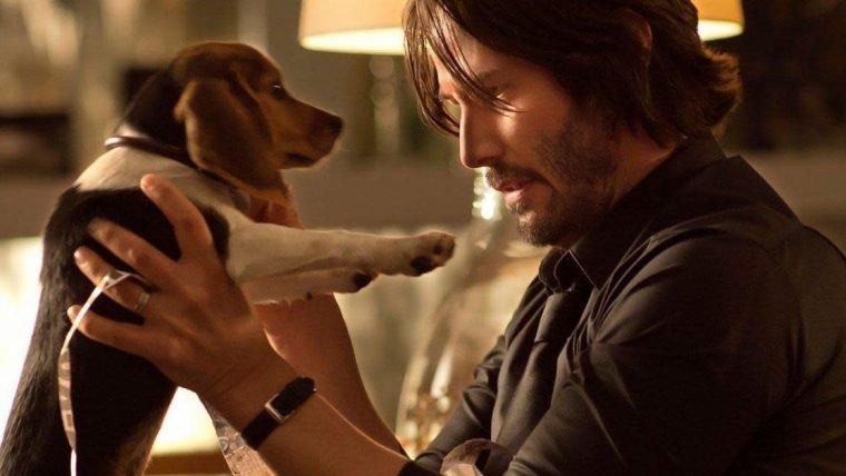 Keanu Reeves se veste como John Wick e brinca com filhotinhos em vídeo adorável