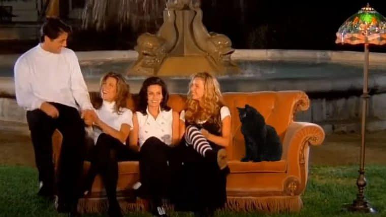 Gato invade abertura de Friends e final de Vingadores: Ultimato