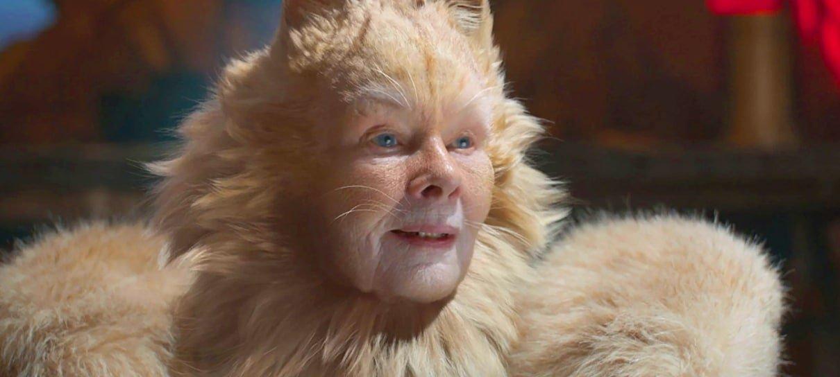 Cats recebe nova versão com atualizações visuais
