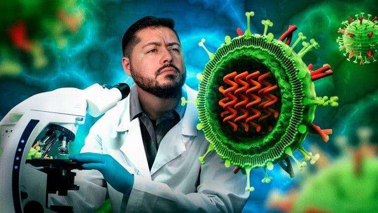 Anatomia de um vírus