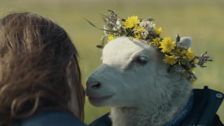Lamb: Noomi Rapace estrela suspense com carneiros; assista ao trailer