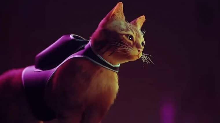 Confira o gameplay de Stray, jogo protagonizado por um gato