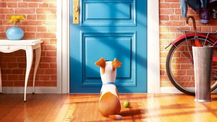 Confira o novo pôster de Pets - A Vida Secreta dos Bichos